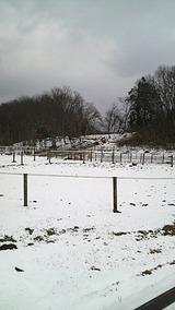 さすがにリンクは雪景色