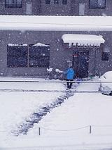 雪かきにはげむ