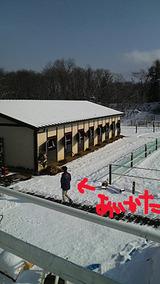 相方と厩舎と雪景色