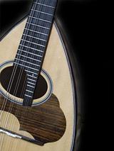 マンドリンは不思議な楽器です。