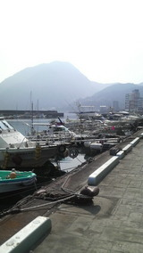 高崎山と港