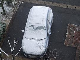 何故、雪・・・。