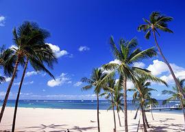 本当にハワイなのか