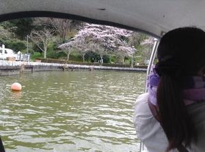 スワンボート (3)