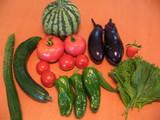 野菜2100