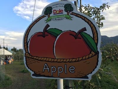農園 りんご