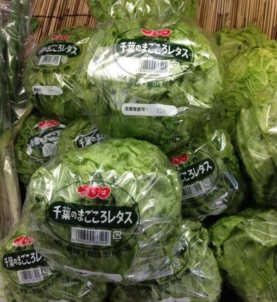 hyakusyouen_kanbe-lettuce01