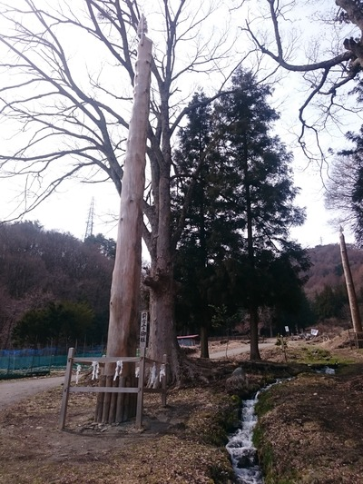 諏訪大社(前宮)3214