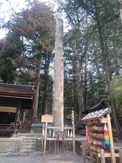 諏訪大社(秋宮)3202