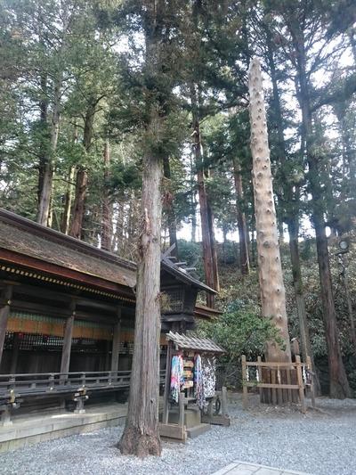 諏訪大社(春宮)3193