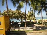Hawaii1015-5