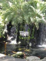 Hawaii0915-25