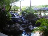 Hawaii0915-15