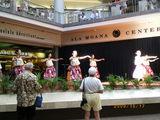 Hawaii1017-9