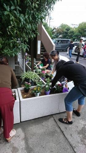 土合中20170906花植え活動1