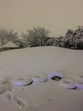 神田小20180123積雪1