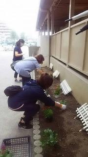 20190906花植え4