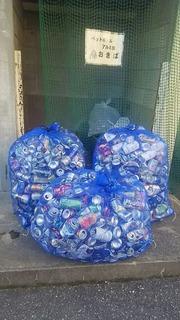 土合小20161214アルミ缶回収3