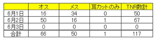 手術数(男木島)