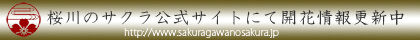 banner_2014_kaikajyouhou