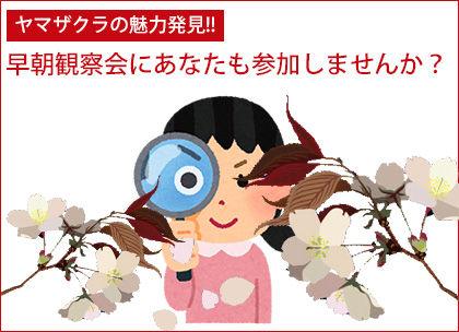 kansatsukai_banner