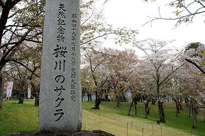 20170417kouen_tenhi