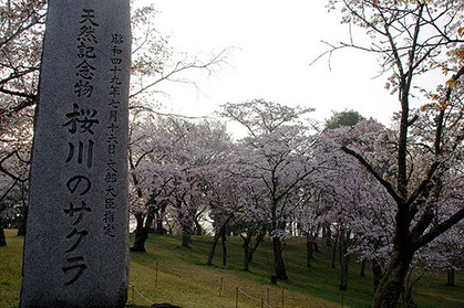 20180402kouen_tenhi