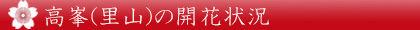 kaika_takamine_banner