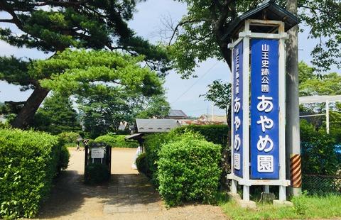 image栗原あやめ園-20210625-1