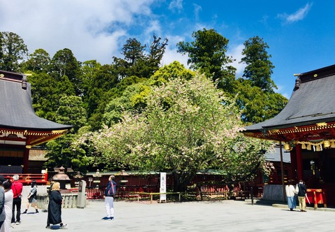 image塩釜神社3-20210502
