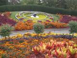デンパークの花壇