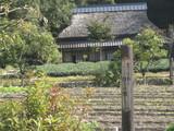 日本昭和村風景