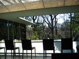 NEZUカフェからの眺望