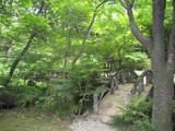 揚輝荘北庭園回遊路