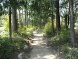 アルプスあづみの公園の散歩道