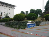 名古屋市博物館の和風庭園