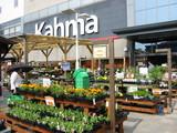 カーマ正面花の苗売り場
