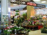 シャンピア花屋