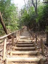 東谷山頂上への階段