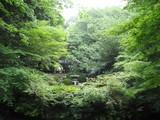 揚輝荘北庭園