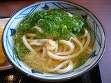丸亀製麺かけうどん
