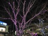 桜山交差点の電飾
