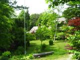 コットンウィードの前庭