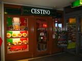 チェスティーノ入口