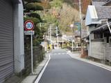 Hoshino2010 158