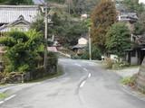 Hoshino2010 054