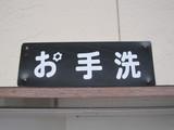 Hoshino2010 033