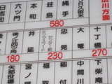 Hoshino2010 022