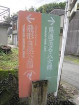Hoshino2010 061