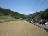Senzogiri0417 058